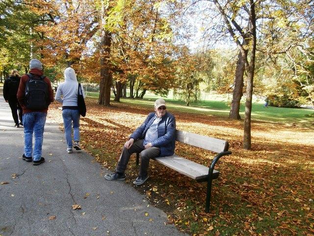 Pötzleinsdorfer Park 12.10.2019